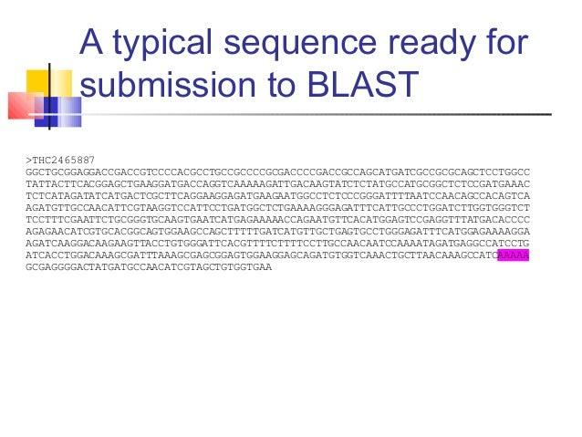 Blast   Definition of Blast by Merriam-Webster