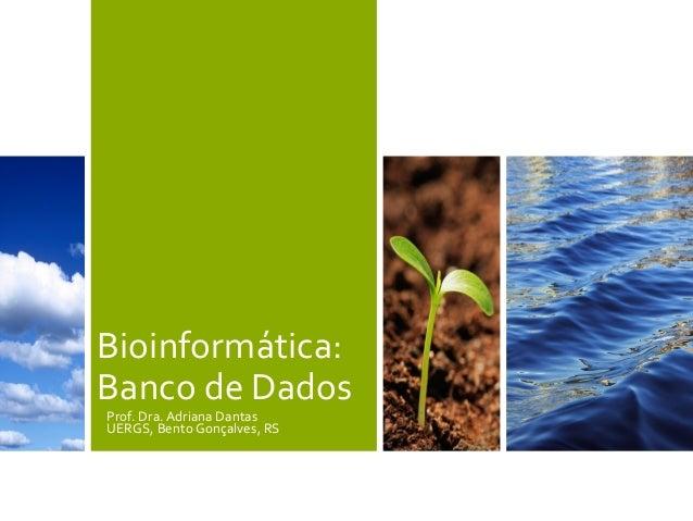 Bioinformática:Banco de DadosProf. Dra. Adriana DantasUERGS, Bento Gonçalves, RS