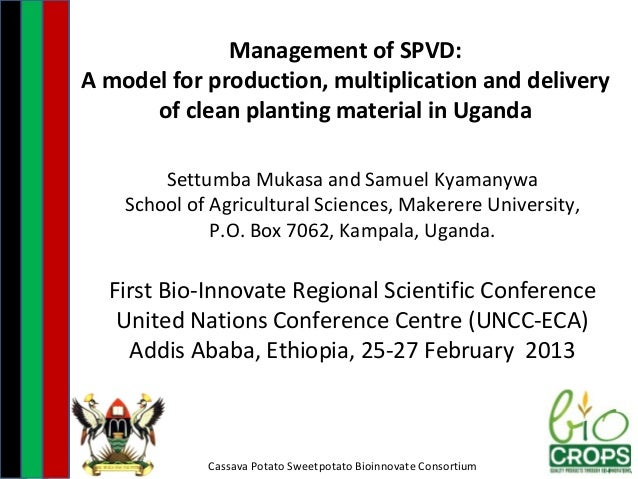 Management of SPVD:A model for production, multiplication and delivery      of clean planting material in Uganda        Se...