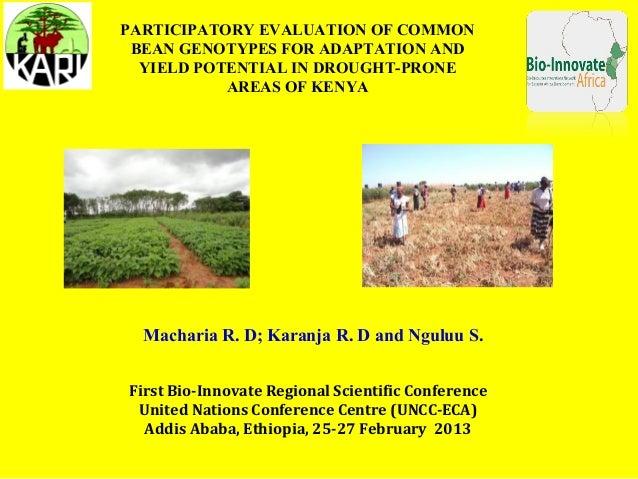 PARTICIPATORY EVALUATION OF COMMON BEAN GENOTYPES FOR ADAPTATION AND  YIELD POTENTIAL IN DROUGHT-PRONE           AREAS OF ...