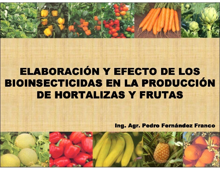 ELABORACIÓ   ELABORACIÓN Y EFECTO DE LOS                       PRODUCCIÓ BIOINSECTICIDAS EN LA PRODUCCIÓN      DE HORTALIZ...