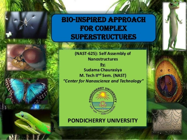 "(NAST-625): Self Assembly of Nanostructures By: Sudama Chaurasiya M. Tech IInd Sem. (NAST) ""Center for Nanoscience and Tec..."