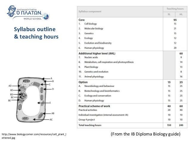 ib bio syllabus Biology syllabus guide 2016pdf download biology syllabus guide 2016pdf (302 mb).