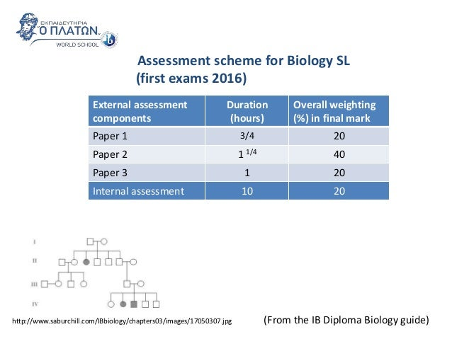 ibdp biology sl specimen exam paper Ib questionbanks, past papers, mark schemes and  hello does anyone have chemistry sl exam  but if you happen to have the may 2005 english a1 exam paper 2.