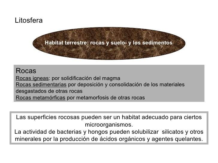 Litosfera Rocas Rocas igneas : por solidificación del magma Rocas sedimentarias  por deposición y consolidación de los mat...