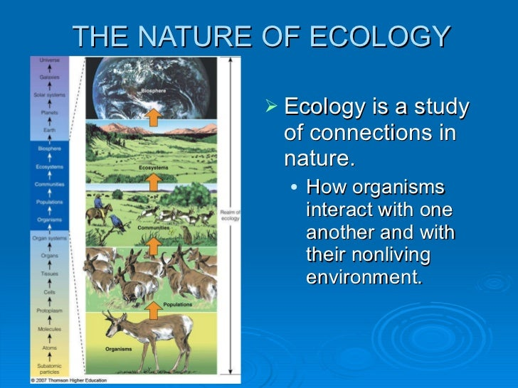 ecosystems and how they work essay The natural disaster prevention mechanisms in most ecosystems and other free   how various species work, produce, consume resources, trying to mimic the.