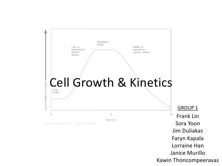 Cell Growth & Kinetics<br />GROUP 1<br />Frank Lin<br />Sora Yoon<br />Jim Duliakas<br />FarynKapala<br />Lorraine Han<br ...