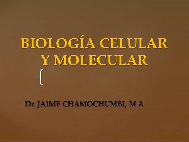 { BIOLOGÍA CELULAR Y MOLECULAR Dr. JAIME CHAMOCHUMBI, M.A
