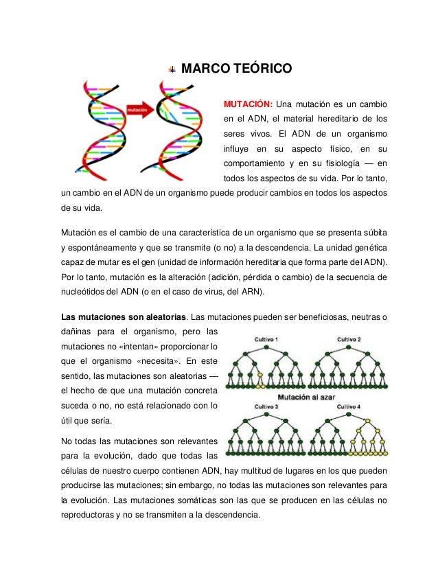 Propiedades de ácidos nucleicos: Mutación Espontánea e Inducida.