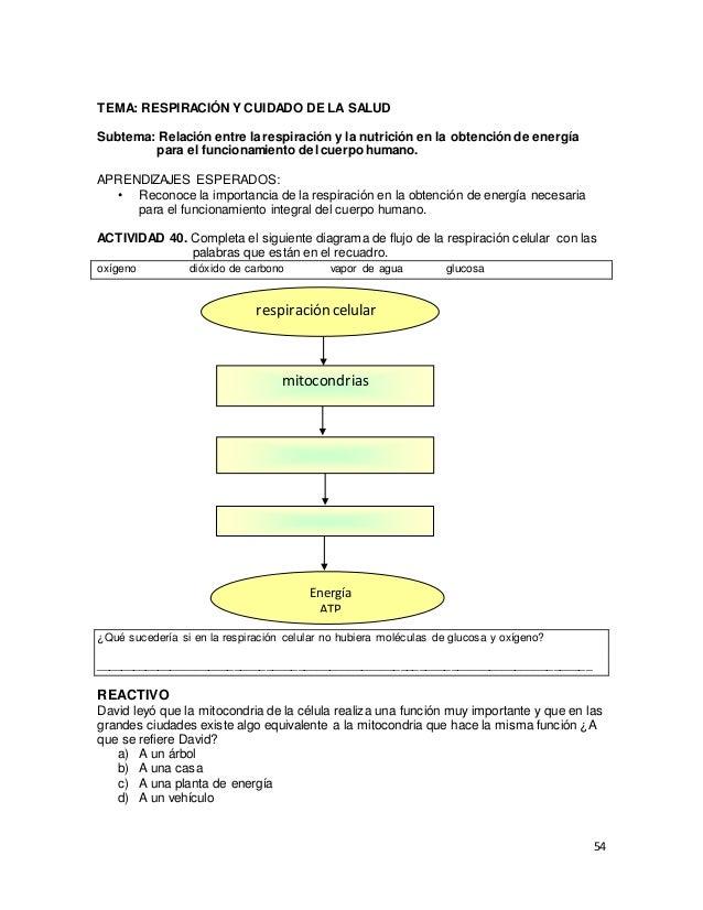 Biología act. de fortalecimiento - secundaria