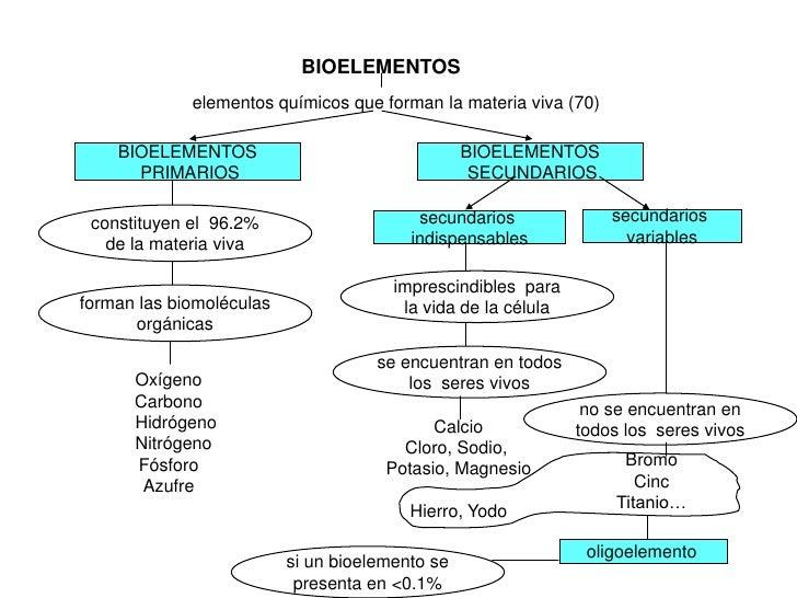BIOELEMENTOS             elementos químicos que forman la materia viva (70)    BIOELEMENTOS                               ...