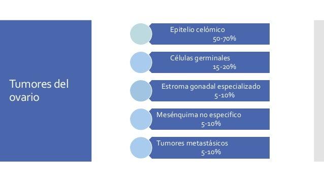 Tumores del ovario Epitelio celómico 50-70% Células germinales 15-20% Estroma gonadal especializado 5-10% Mesénquima no es...