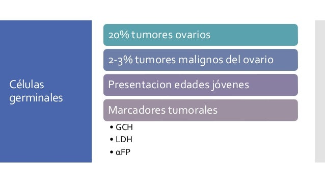 Células germinales 20% tumores ovarios 2-3% tumores malignos del ovario Presentacion edades jóvenes Marcadores tumorales •...