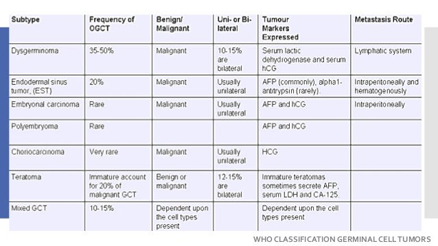 WHO CLASSIFICATION GERMINAL CELLTUMORS