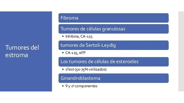 Tumores de células granulosas Call-Exner bodies