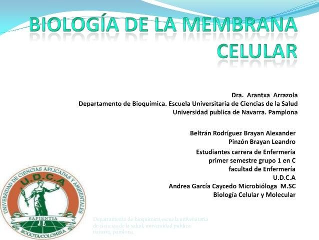 Departamento de bioquimica,escuela universitaria de ciencias de la salud, universidad publica navarra, pamlona.