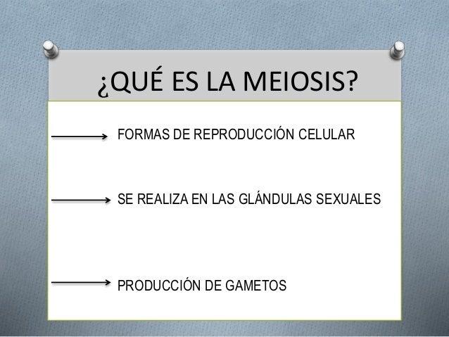 ¿QUÉ ES LA MEIOSIS?  FORMAS DE REPRODUCCIÓN CELULAR  SE REALIZA EN LAS GLÁNDULAS SEXUALES  PRODUCCIÓN DE GAMETOS