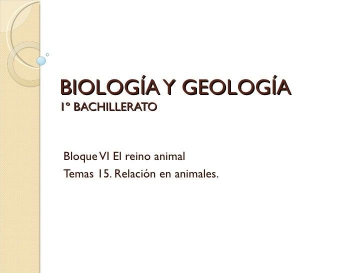 BIOLOGÍA Y GEOLOGÍA1º BACHILLERATOBloque VI El reino animalTemas 15. Relación en animales.