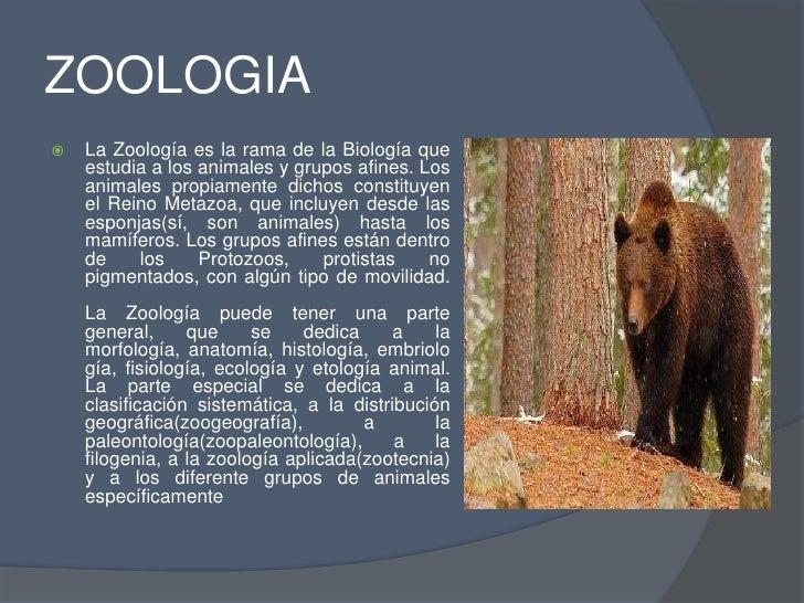 Zoologia biologia