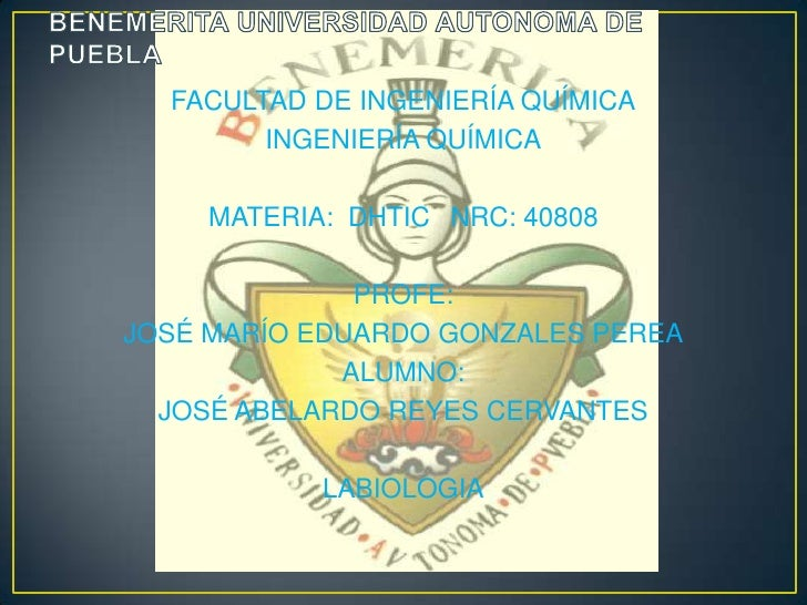 BENEMERITA UNIVERSIDAD AUTONOMA DE PUEBLA<br />FACULTAD DE INGENIERÍA QUÍMICA<br />INGENIERÍA QUÍMICA<br />MATERIA:  DHTIC...