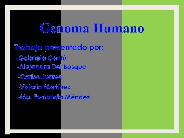 El genoma humano es el genoma del Homo sapiens, es decir, la secuencia de ADN contenida en 23 pares de cromosomas en el nú...
