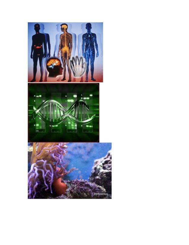 Biologia Slide 3