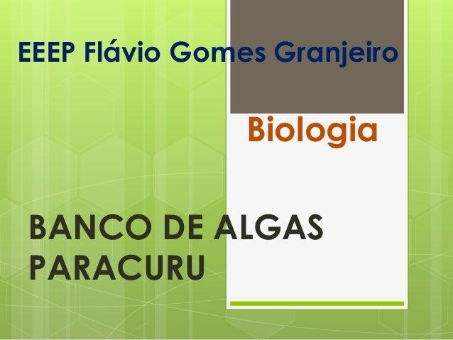 EEEP Flávio Gomes GranjeiroBiologiaBANCO DE ALGASPARACURU