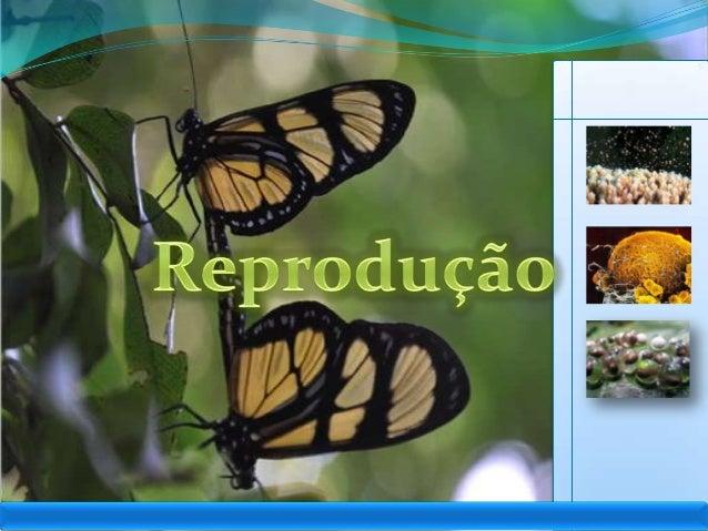 IntroduçãoJanainaGraças à reprodução, a perpetuação da vida épossível, desde o seu surgimento. A forma dereprodução que se...