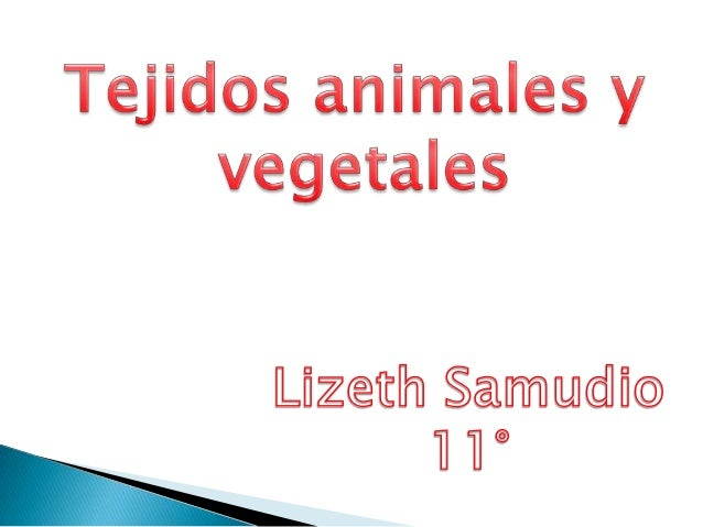 Tejidos animales y vegetales