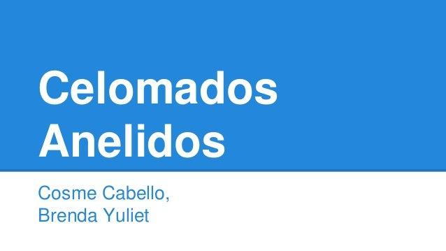 Celomados  Anelidos  Cosme Cabello,  Brenda Yuliet
