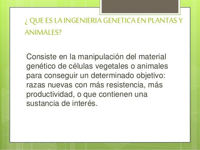 Ingeniería genética   Slide 2