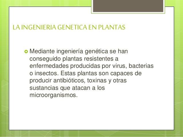 Ingeniería genética   Slide 3