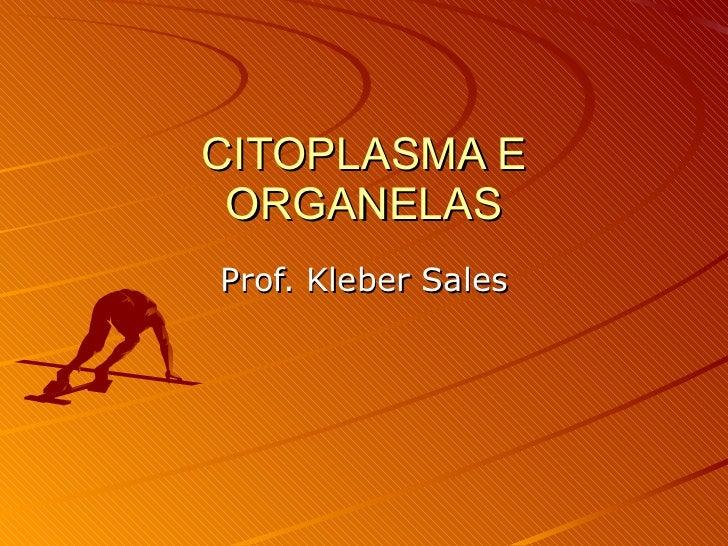CITOPLASMA E ORGANELAS Prof. Kleber Sales