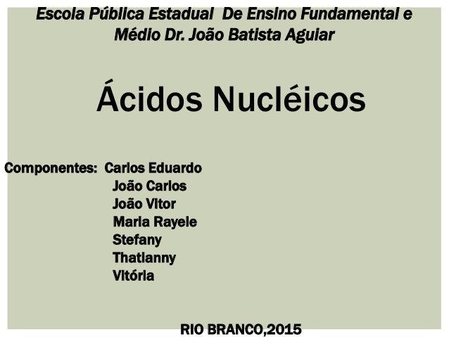 Escola Pública Estadual De Ensino Fundamental e Médio Dr. João Batista Aguiar Ácidos Nucléicos Componentes: Carlos Eduardo...