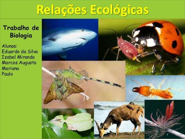 Trabalho de Biologia Alunos: Eduardo da Silva Izabel Miranda Marcos Augusto Mariana Paulo Relações Ecológicas 1