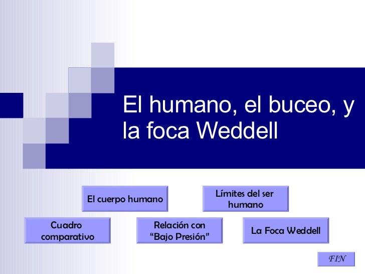 """El humano, el buceo, y la foca Weddell Límites del ser  humano FIN Relación con """" Bajo Presión"""" Cuadro  comparativo La Foc..."""