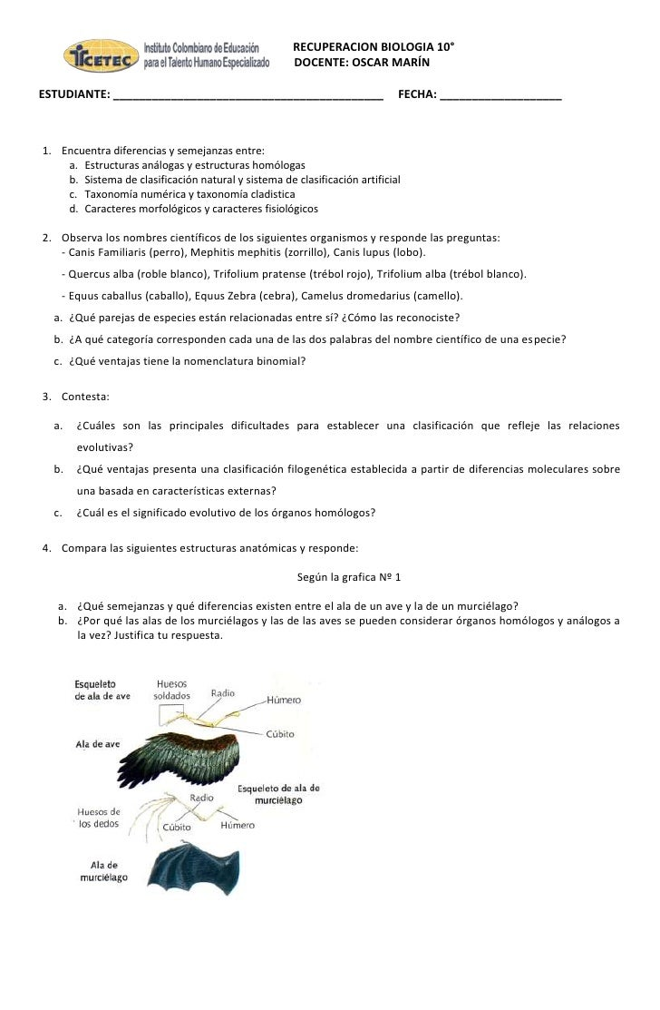 RECUPERACION BIOLOGIA 10°                                                     DOCENTE: OSCAR MARÍNESTUDIANTE: ____________...