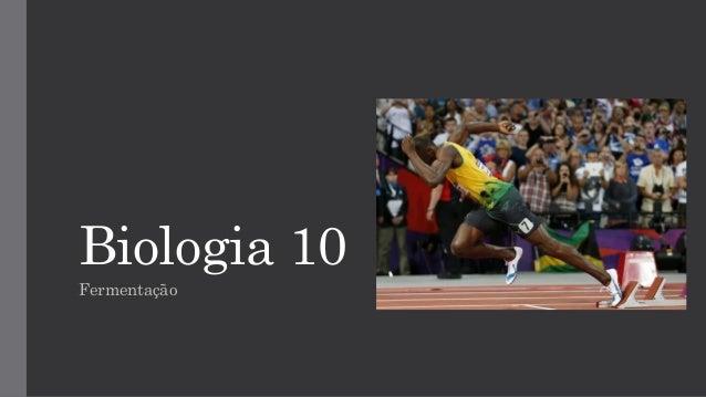 Biologia 10  Fermentação