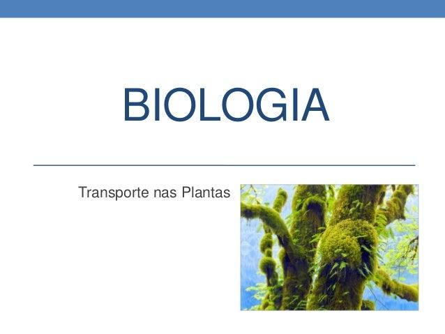 BIOLOGIA Transporte nas Plantas