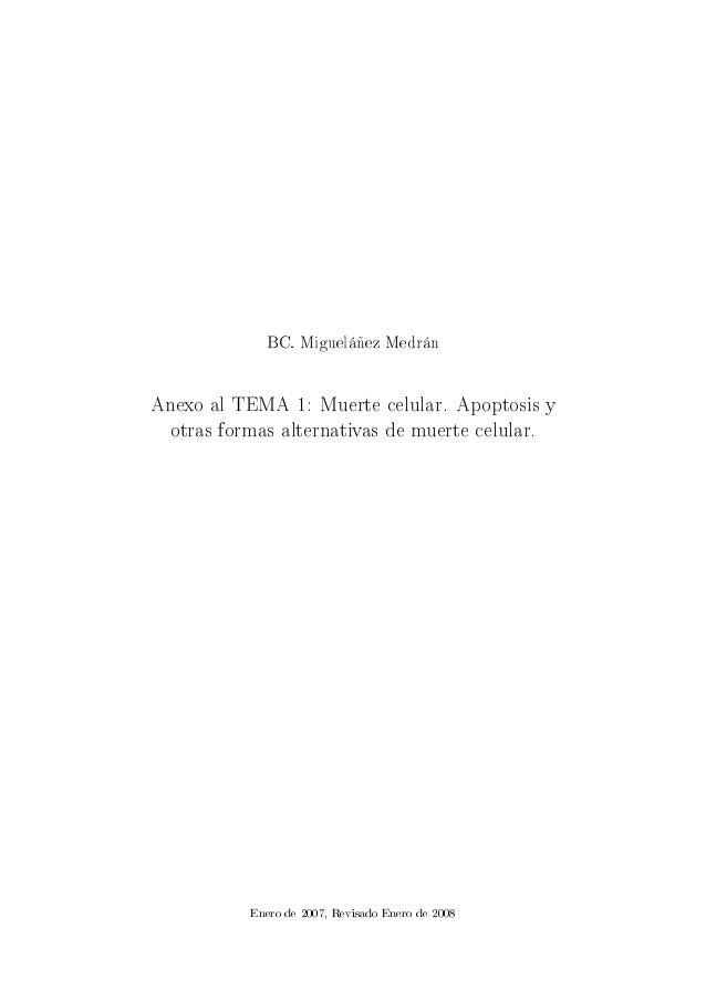 BC. Migueláñez Medrán Anexo al TEMA 1: Muerte celular. Apoptosis y otras formas alternativas de muerte celular. Enero de 2...
