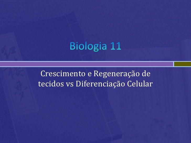 Crescimento e Regeneração detecidos vs Diferenciação Celular