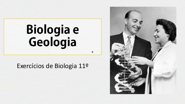 Exercícios de Biologia 11º