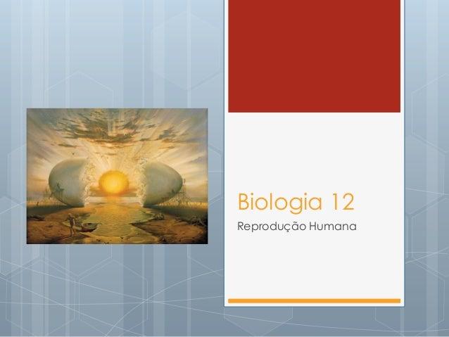 Biologia 12 Reprodução Humana