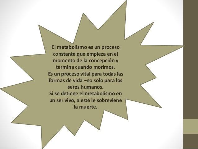 Metabolismo Celular Clase 20
