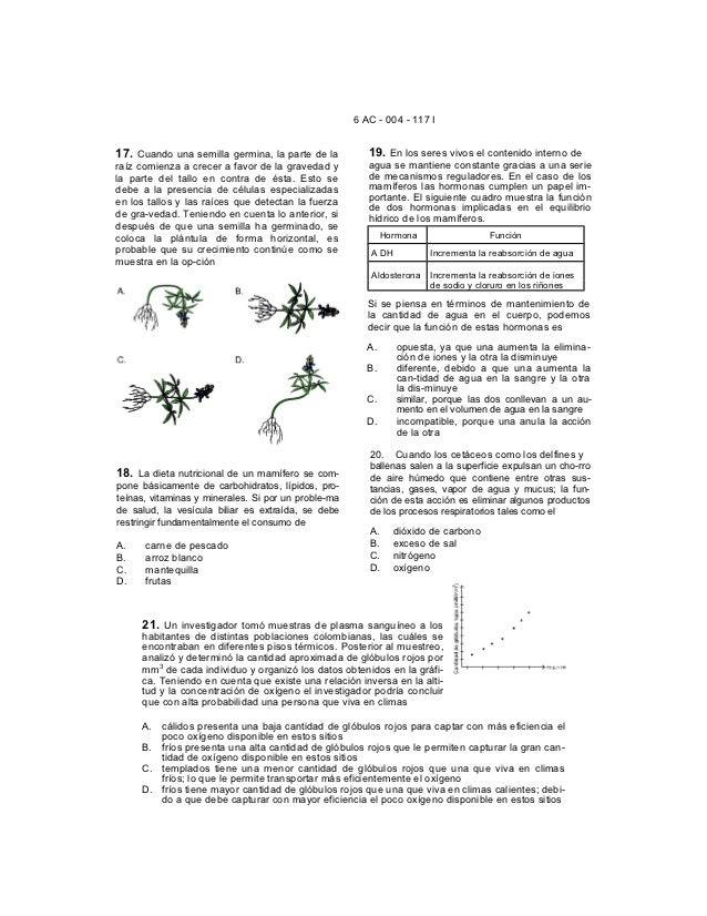6 AC - 004 - 117 I17. Cuando una semilla germina, la parte de la          19. En los seres vivos el contenido interno dera...