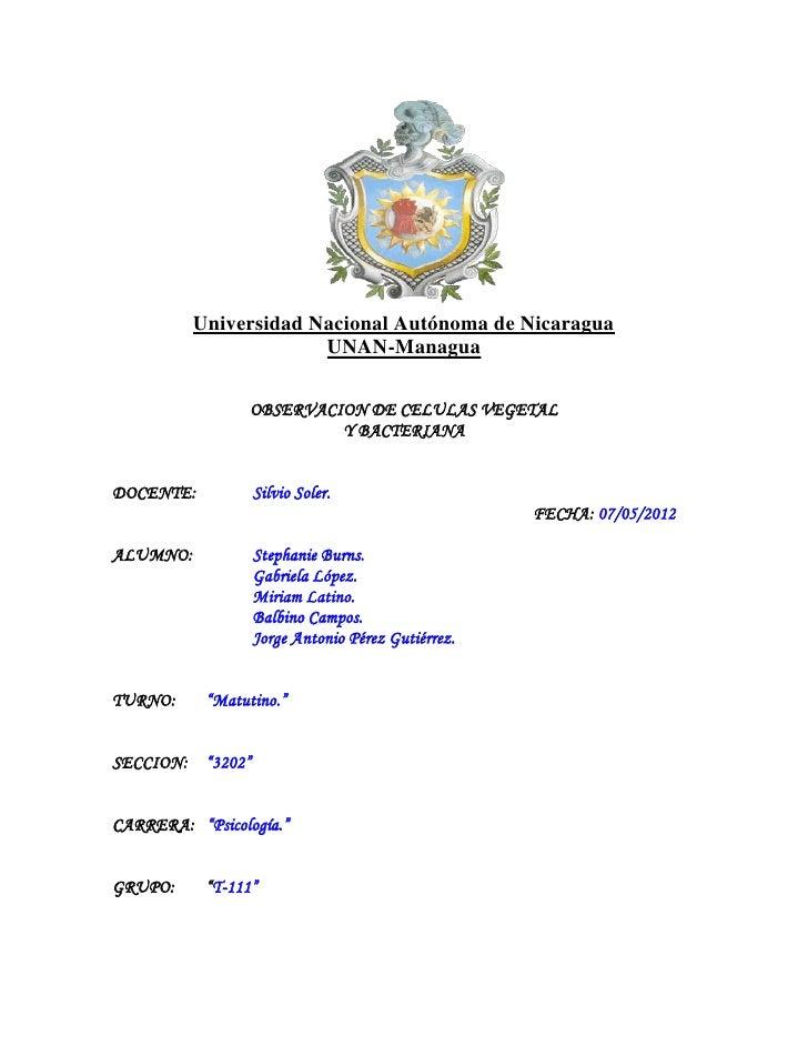Universidad Nacional Autónoma de Nicaragua                       UNAN-Managua                 OBSERVACION DE CELULAS VEGET...
