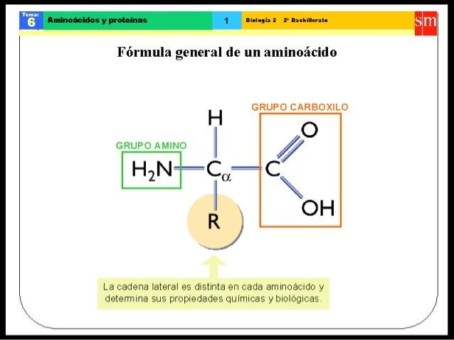 v r flminoàoidos y proteinas Biologia 2 2° Baehillerato  Fòrmula genera] de un aminoàcìdo  GRUPO CARBOXILO  H  GRUPO AHÎINO...