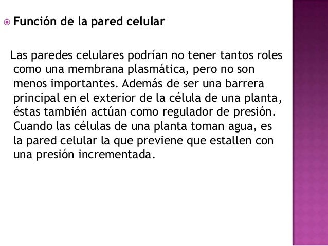 Membrana Plasmática: No es estática ni rígida, por lo contrario se mueveen forma permanente. Por eso se dice queresponde ...