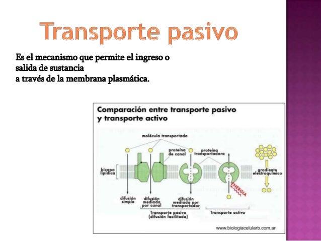 Transporte activo Transporte pasivova en contra del gradiente deconcentraciónVa a favor del gradiente deconcentraciónConsu...