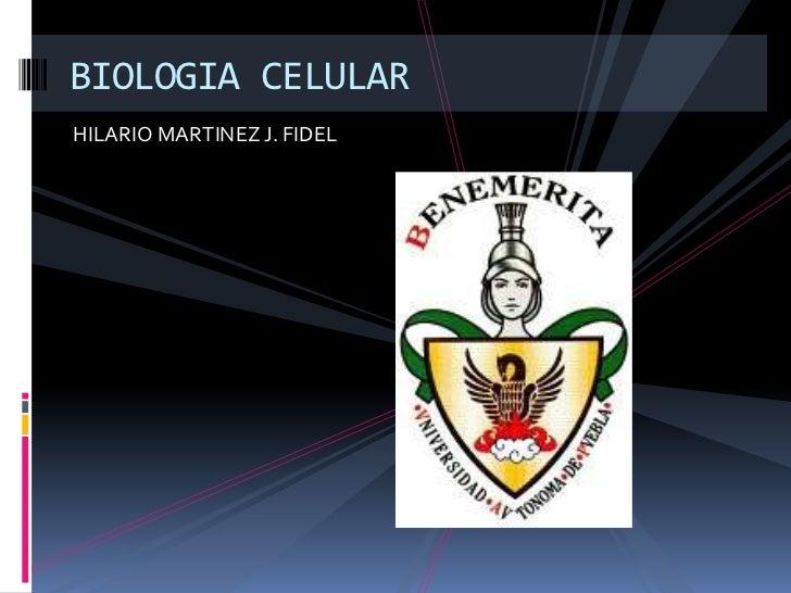 BIOLOGIA CELULARHILARIO MARTINEZ J. FIDEL